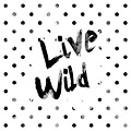 Live Wild by Pati Photography