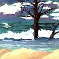 Lost Swan by Patricia Griffin Brett
