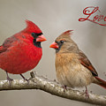 Love by Bonnie Barry