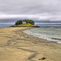 Low Tide In Popham Beach Maine by Tammy Wetzel