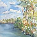 Lucien Lake Shoreline by Pat Katz