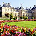 Luxemborg Gardens, Paris