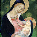 Madonna Of The Fir Tree by Marianne Stokes