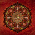 Mandala Flames Sp by Bedros Awak