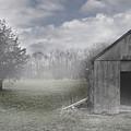 Manor Road Farm by Tom Romeo
