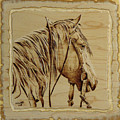 Maple Horse by Chris Wulff