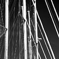 Mast Profile by John Rizzuto