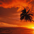Maui, A Beautiful Sunset Print by Ron Dahlquist - Printscapes