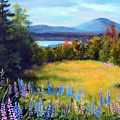 Meadow Lupine II by Laura Tasheiko
