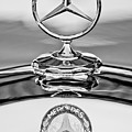 Mercedes Benz Hood Ornament 2 by Jill Reger