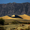 Mesquite Flat Dunes - Death Valley California by Christine Till