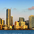 Miami Skyline In Morning Daytime Panorama by Jon Holiday