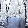 Michgan Winter 10 by Scott Hovind