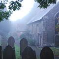 Misty St Budeaux by Donald Davis