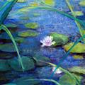 Monets Garden by Susan Jenkins