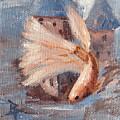 Mongo Betta Fish by Brenda Thour