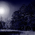 Moon And Dreams by Nina Fosdick