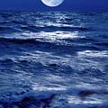 Moonlight Over The Ocean by Christian Lagereek