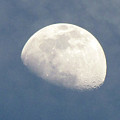 Moonrise by Helaine Cummins