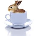 Morning Bunny by Bob Nolin