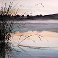 Morning Light by John Williams
