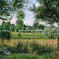 Morning Sunlight Effect At Eragny by Camille Pissarro