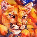 Mountain Lion Red-yellow-blue by Summer Celeste