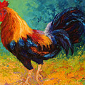 Mr Big - Rooster by Marion Rose