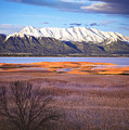 Mt. Timpanogos And Utah Lake by Utah Images