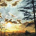 Muskoka Dawn by Hanne Lore Koehler