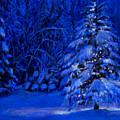 Natural Christmas Tree by Susan Jenkins