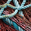 Nets And Knots Number Six by Elena Nosyreva
