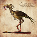 Never Bird by Mandem