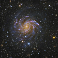 Ngc 6946, Also Known As The Fireworks by Robert Gendler