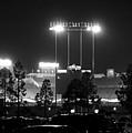 Night Game by Ricky Barnard