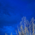 Night Sky by Steve Gadomski