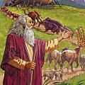 Noah's Ark by Valer Ian