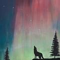 Northern Lights Stardust by Jackie Novak