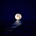 Ocean Moon by Bill Cannon