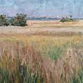 Ochlockonee Marsh by Pam Talley