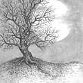 October Moon by Adam Zebediah Joseph