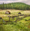 Old Montana Homestead by Sharon Foster