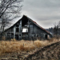 Old Shed Left By Itself by Laurie With