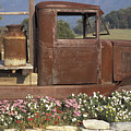 Old Truck In Tennessee by Stan and Anne Foster