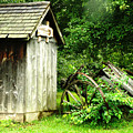 Old Wood Shed by Scott Hovind