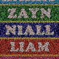 One Direction Names Bottle Cap Mosaic by Paul Van Scott