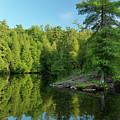 Ontario Nature Scenery by Oleksiy Maksymenko