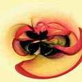 Open To Imagination by Teresa Zieba