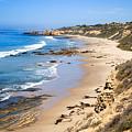 Orange County California by Paul Velgos