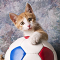 Orange Tabby Kitten With Soccer Ball by Garry Gay